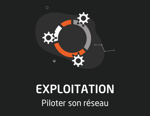 section exploitation